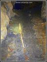 Zz-Petra meategian erabili eta oraindik bertan dagoen erraila