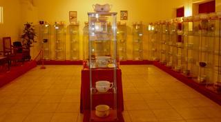 Honelako gela ugari ikusi nituen pixontziari eskeinitako museo batean.Argazki bat atera gabe ezin irten.