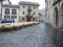 Azaroa iristean artzaiak jatxi dira mendietatik, Aizarna bailarako zelaietara.