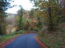Udazkenean naturak dituen koloreak oso politak dira, (Santa Engrazira bidean lapatx inguruan ateratako argazkia da  hau)