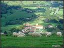 Ardiak larrean direla, Endoia gainetik begiratuta ikusten den paisaia,  Arroagoia barren dela.