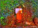 Kantu batek dio, nire maitia zer duzu kolore txarrak dauzkazu, kolore hoiek mudatzeko metal ura eran biar duzu. Egia bada iturri honetako  urak  balioko du horretarako,  baina  koronabirusa uxatzeko, balioko balu ederki.(Oinatz mendiko Azpilla iturria )