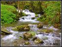 Apirila euritsu honetan begira zenbat ur dijoan Granada errekan.Erreka garbia natura dotore baten barruan.